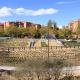 parque-central-tres-cantos